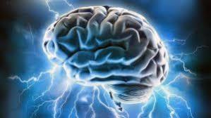 Le cerveau, plus gros consommateur de sucre